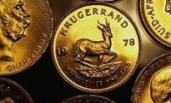 Инвестиции в монеты: вкладываем грамотно