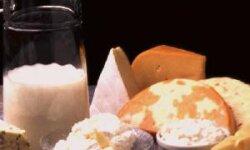 Молочная промышленность – основные вопросы…