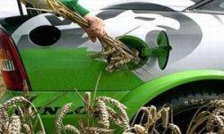 Производство биотоплива в США не имеет перспектив