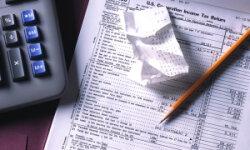 Давление налогов загонит бизнес в «тень»