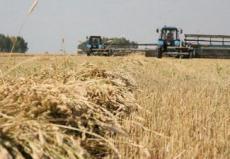 Аграрный бизнес