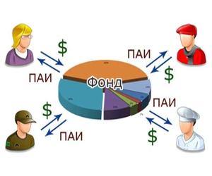 Структура паевого инвестиционного фонда
